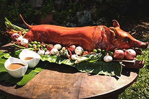 Lechon Suppliers in the Philippines